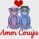 Amor Coruja - Inspiração e Romance