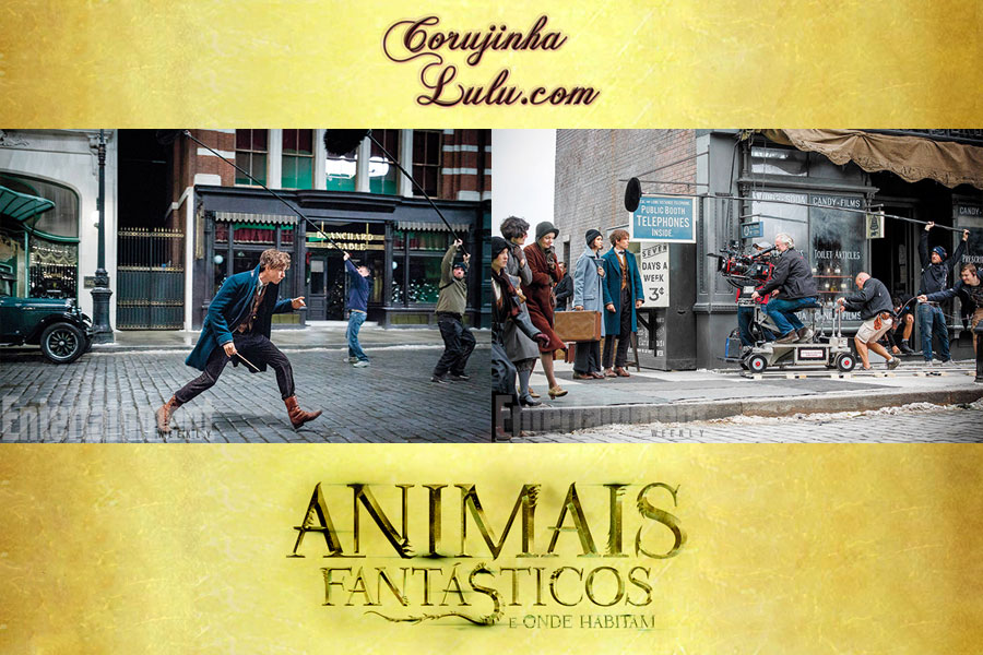 animais fantasticos e onde habitam filme movie harry potter corujinhalulu warner bros pictures