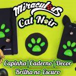 Diy: Como fazer Capinha de Celular / Caderno e Decoração do Cat Noir (Miraculous As Aventuras de Ladybug)
