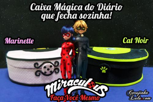 Diy Miraculous Ladybug: Como fazer a Caixa Mágica do Diário da Marinette + Cat Noir | Corujices da Lu